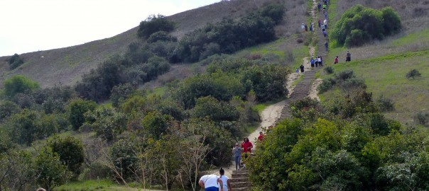 Sunday hike, Baldwin Hills Stairs